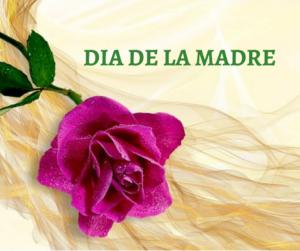 Día de la Madre. 10 Libros para Regalar.