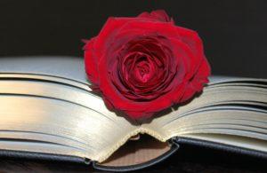 """10 Lecturas Para Regalar en """"El Día del Libro"""""""